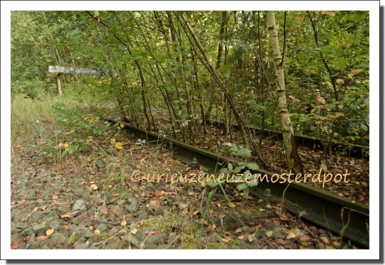 abandoned train (6)