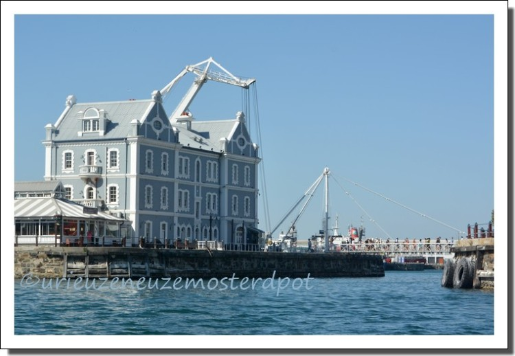 harbour cape town (7)